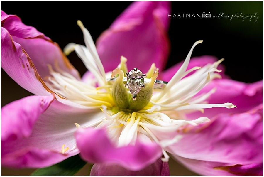 Asheville Raleigh Wedding Ring Photographer