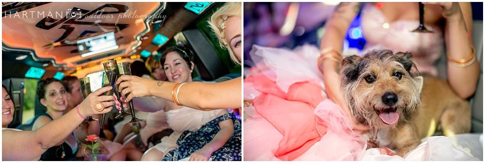 Raleigh Bridesmaids in Limosine