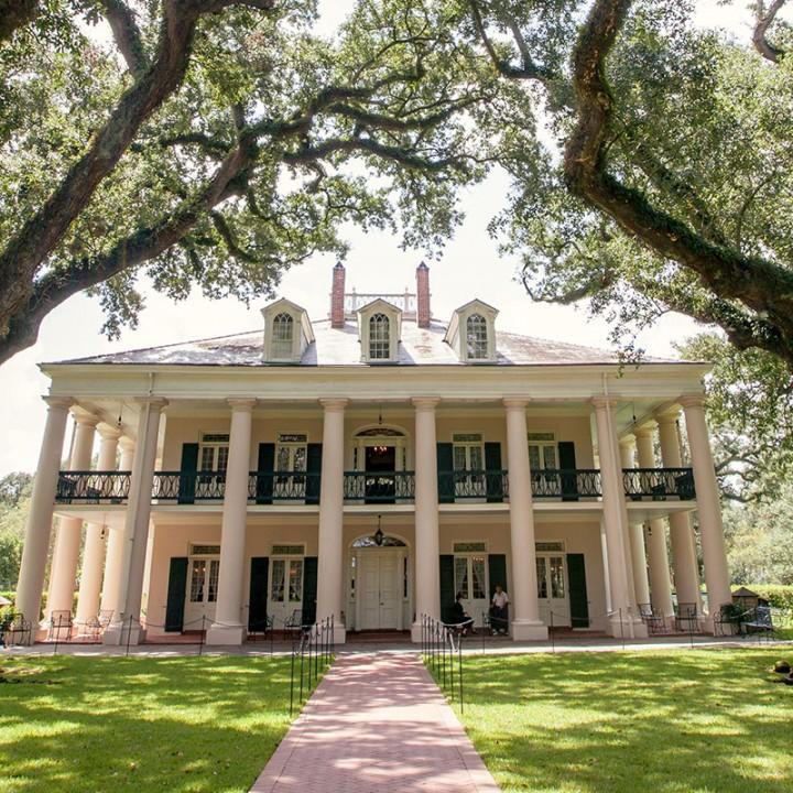 Exploring Louisiana Swamps and Plantations