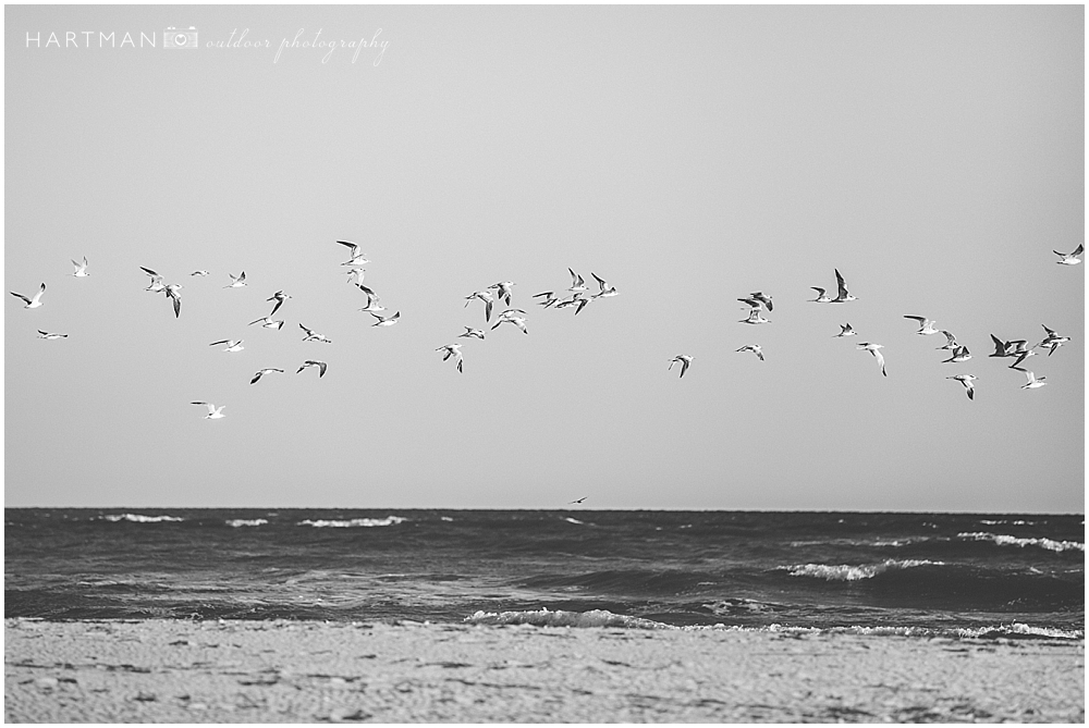 Holden Beach North Carolina Photographer 0091