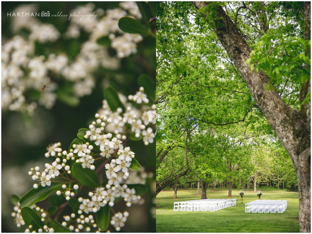 Magnolia Manor Pecan Grove Outdoor Ceremony