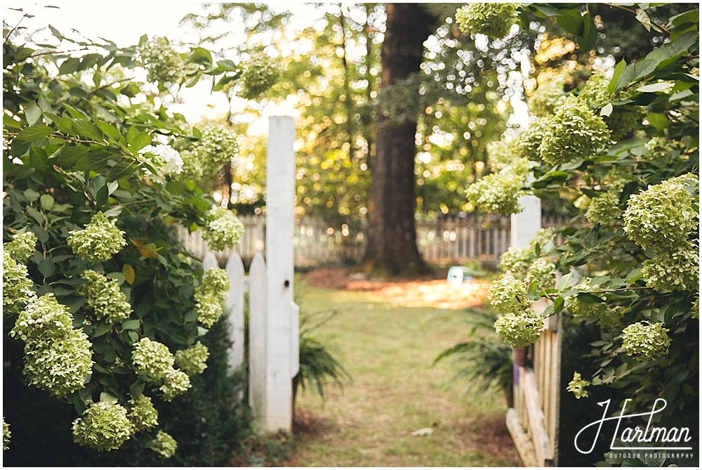 Asheville Greensboro Elopement Photographer 0061