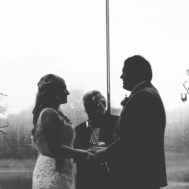 Stephanie + Cale | Morton Arboretum Wedding