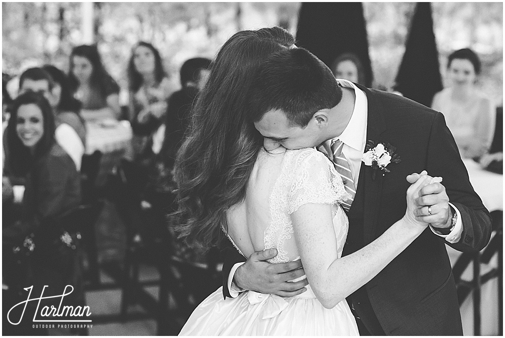 Raleigh Asheville Best Wedding Photographer 0729