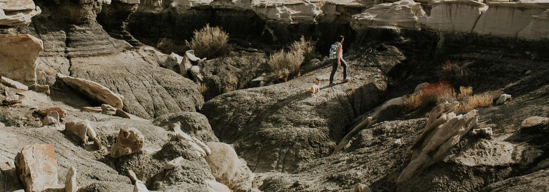 Bisti Wilderness Part 1  New Mexico