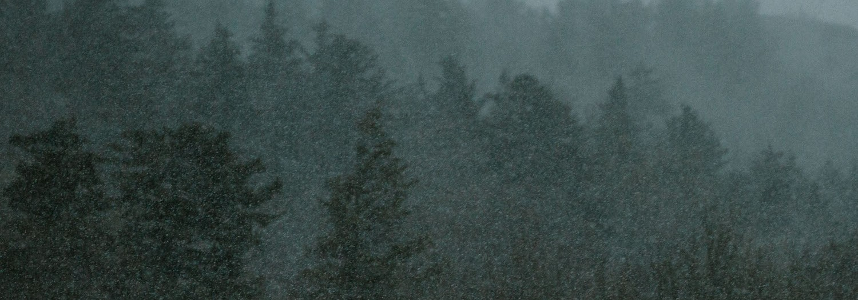 May Snow on the Blue Ridge Parkway   Boone, North Carolina