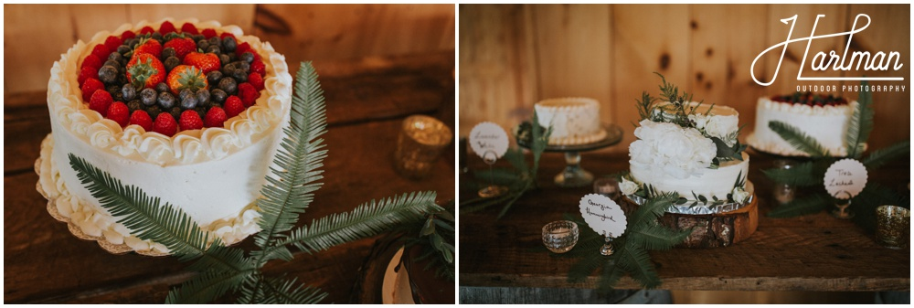 Asheville North Carolina Mountain Destination Wedding _0109