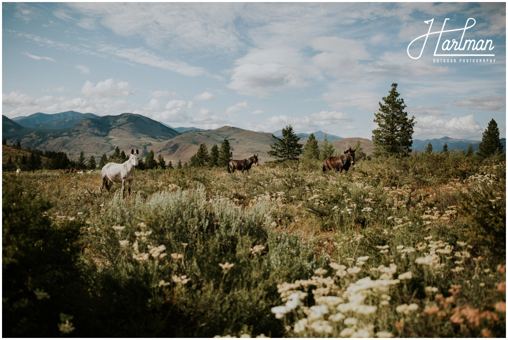 Mazama Washington Wedding Photographer_0003