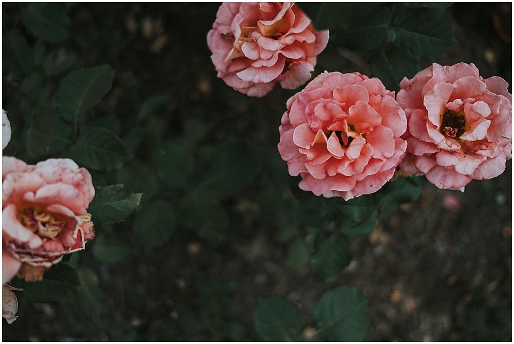 Raleigh Rose Garden Reception