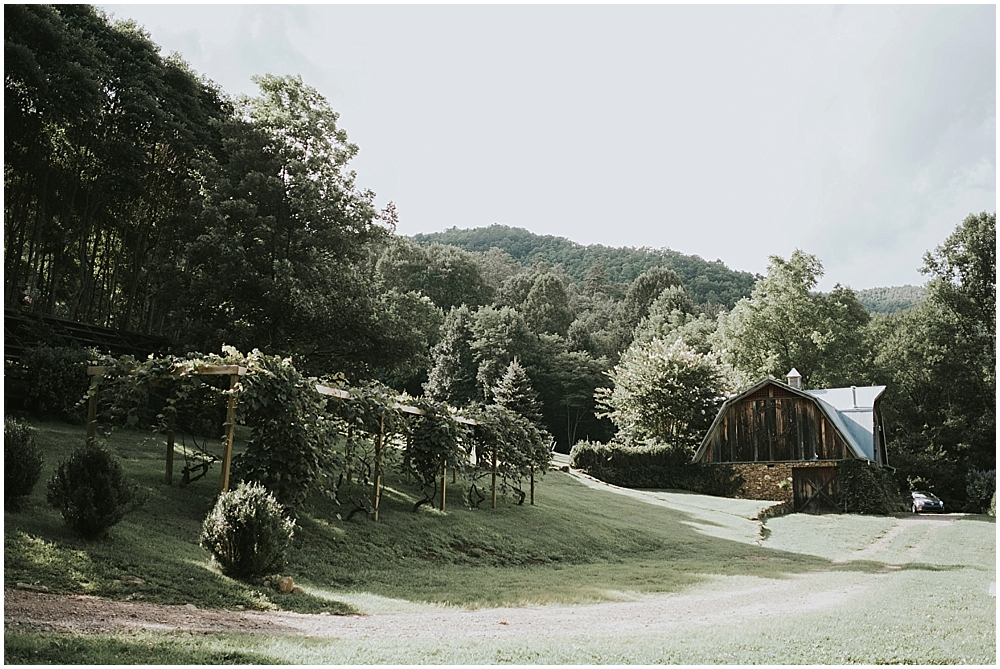 western north carolina vineyard wedding venue