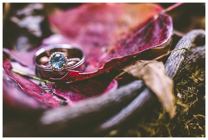 Raleigh Fall Engagement Ring