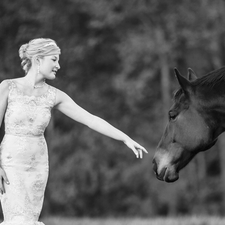 Styled Bridal Shoot | Merry Hill Farm, Mebane NC