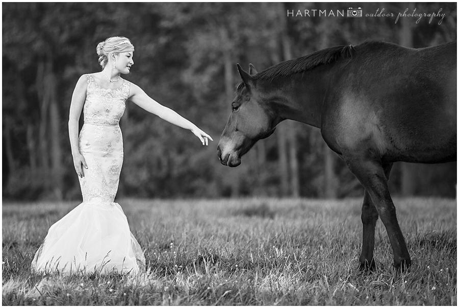 Grace Bridal Session Merry Hill Farm Horse