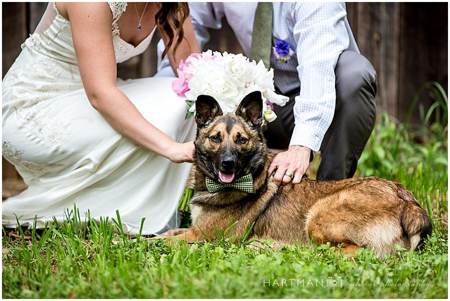 Bride and Groom with german shepherd dog