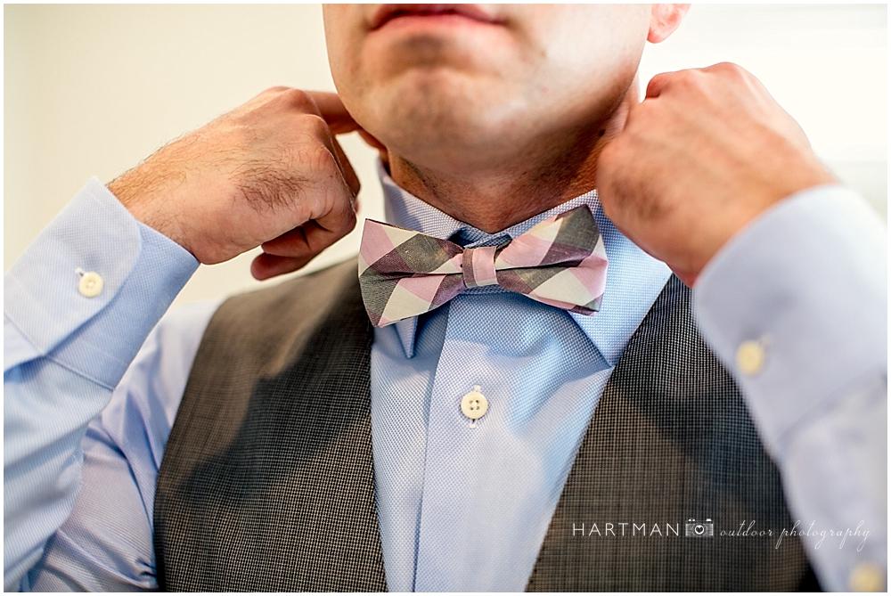 Pink Grey Bow Tie