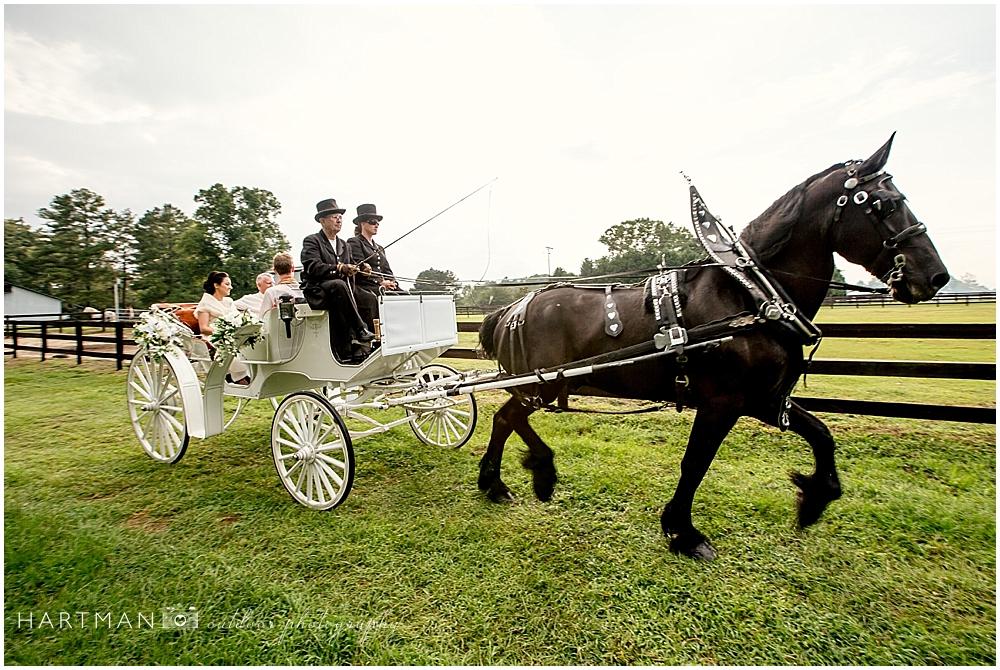 Raeford Horse Drawn Carriage