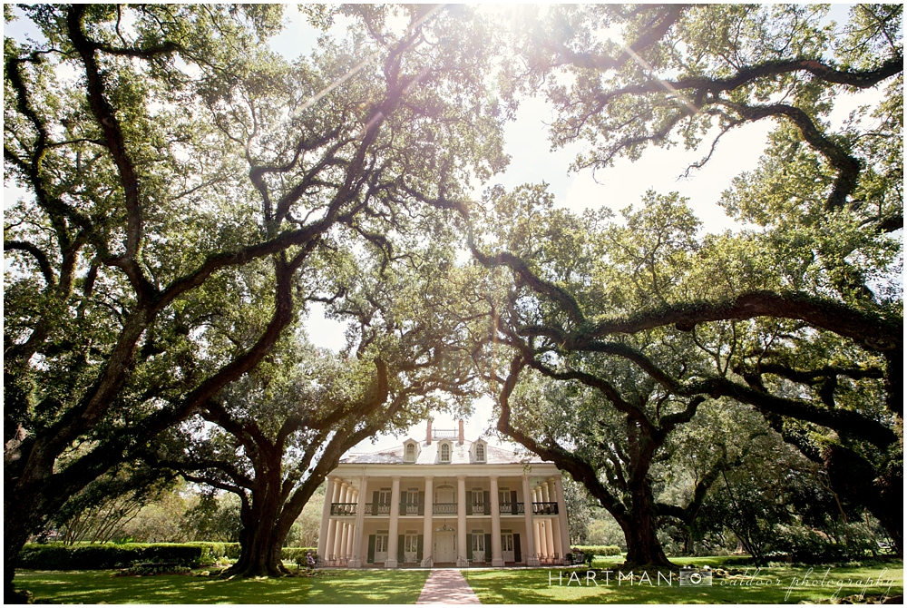 Oak Alley Plantation Wedding Photographer 00136