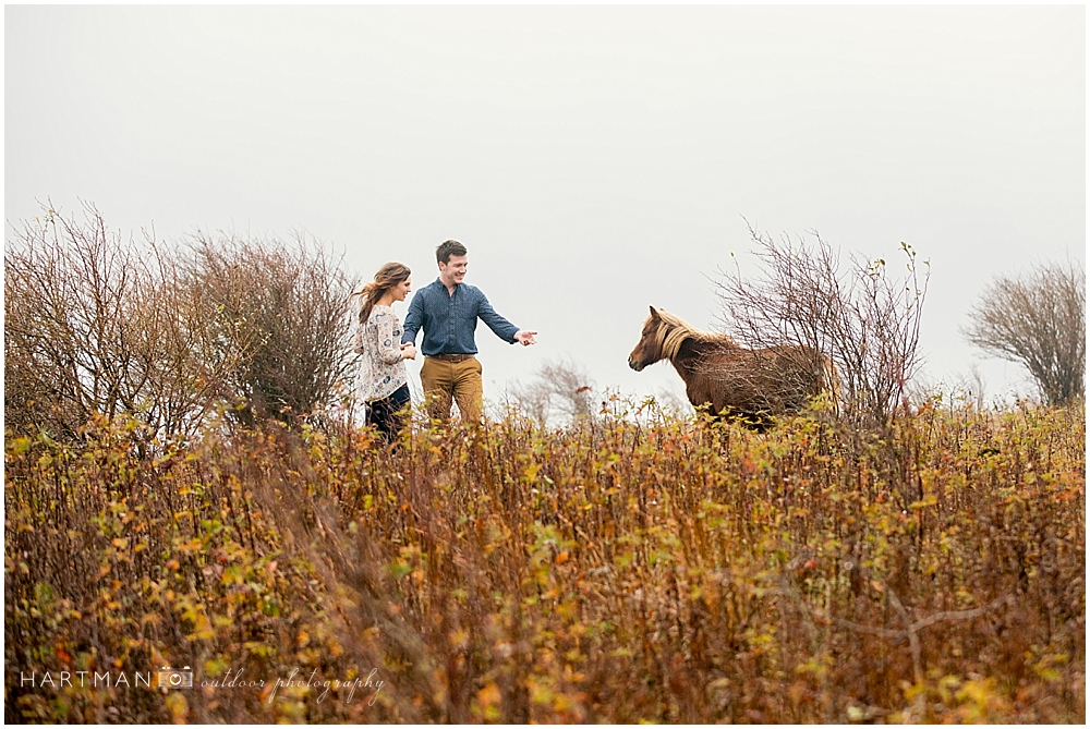 Grayson Highlands Engagement Outdoorsy