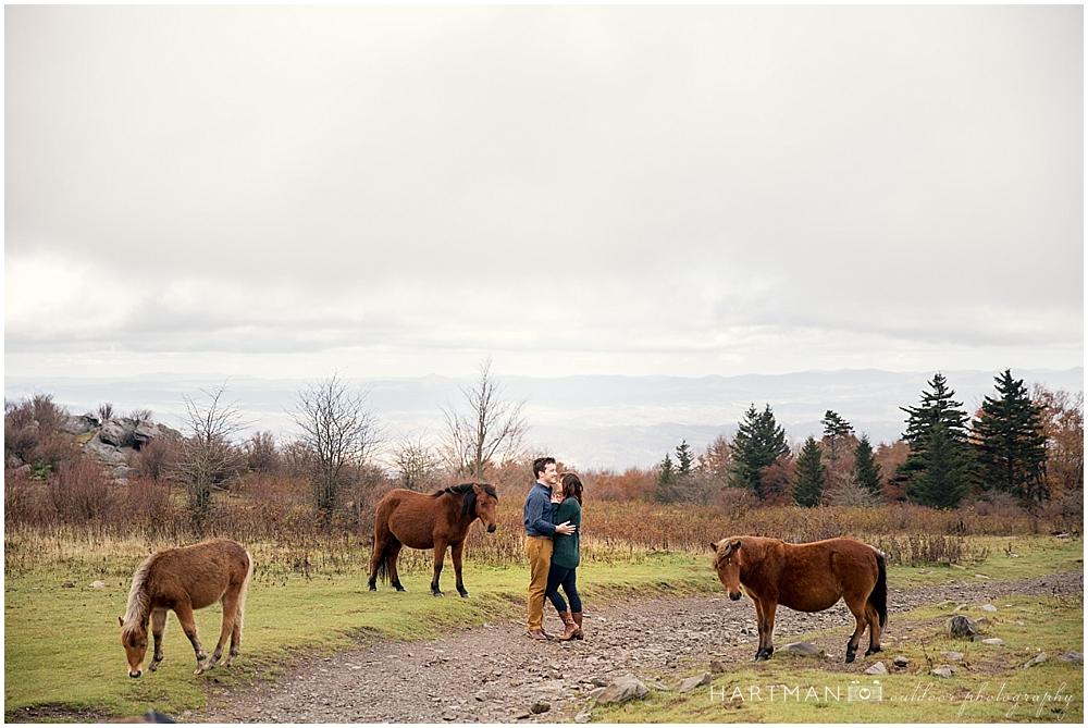 Grayson Highlands Engagement Horses