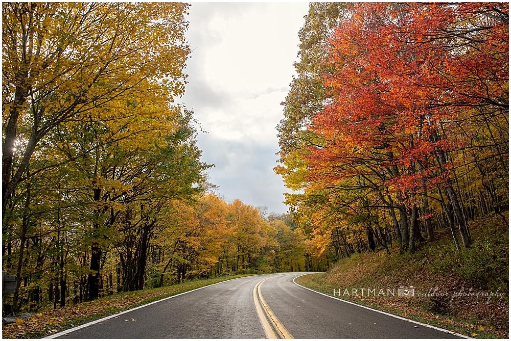 Fall Colors Grayson Damascus VA