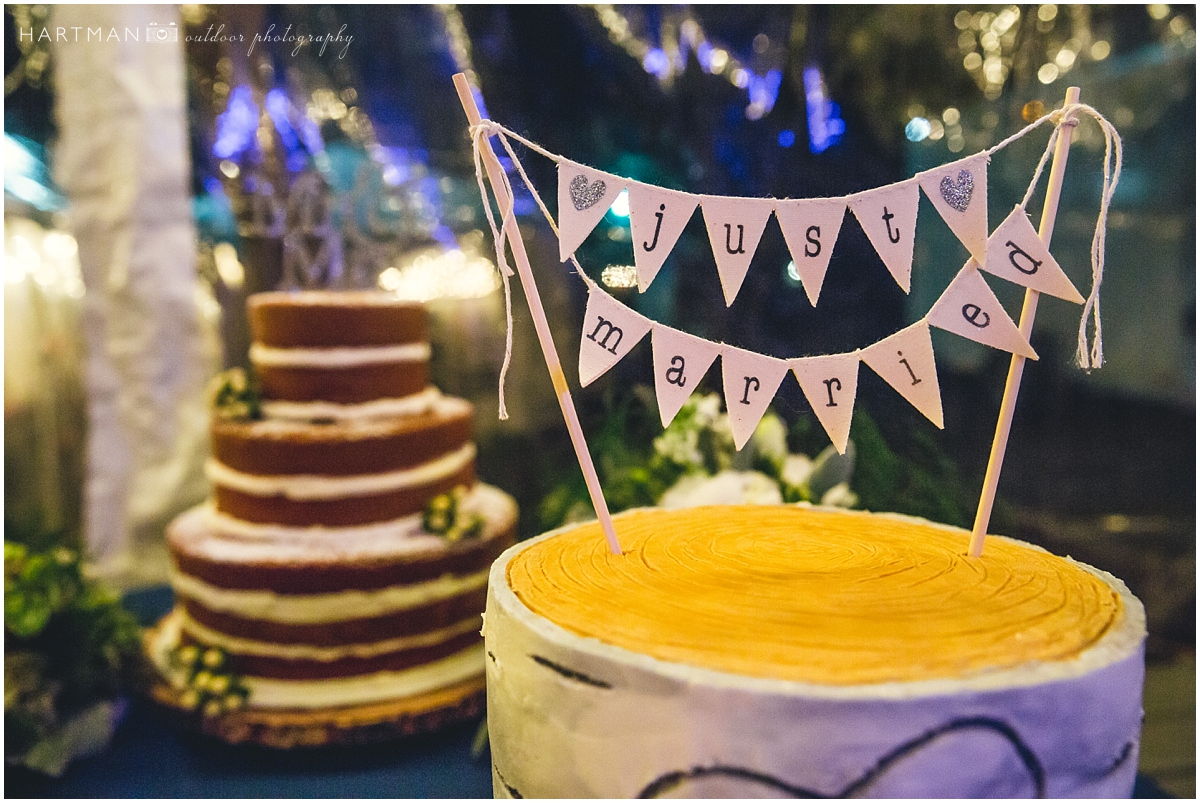 Just married cake banner