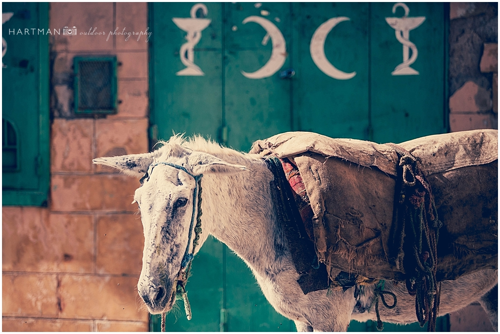 Morocco Atlas Mountains Destination Wedding Travel Photographer 00082