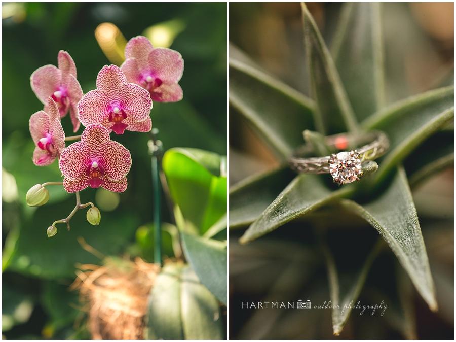 North Carolina  Zoo Wedding 00059