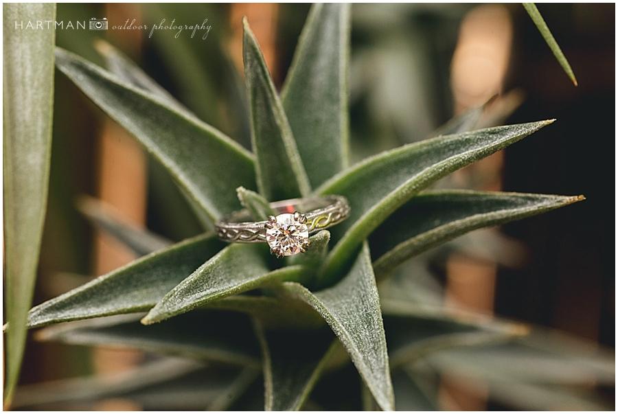 North Carolina Zoo Wedding 00060
