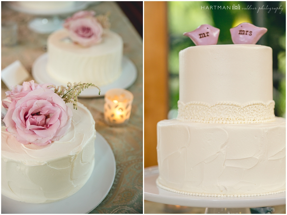Durham NC Elegant Simple Wedding Cake