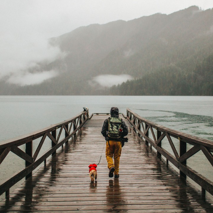 Rainy Day at Lake Crescent | Washington