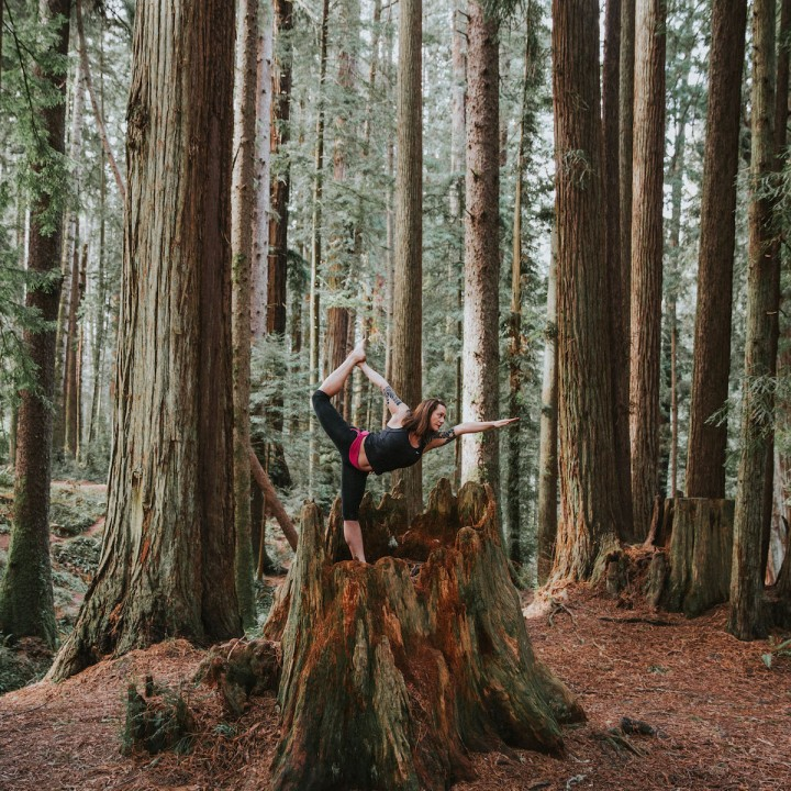 Yoga in Sequoia Park | California