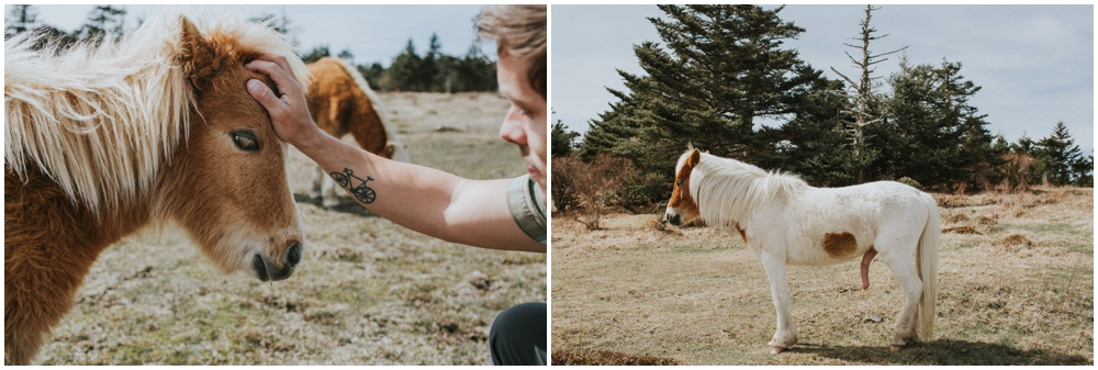 Grayson Highlands Engagement Elopement_0044