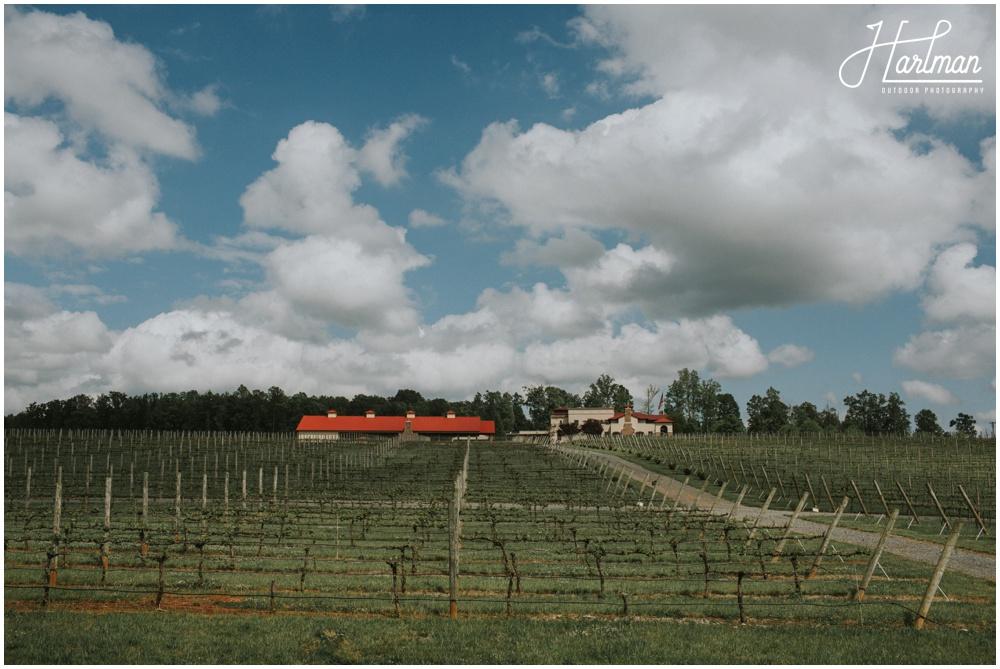 North Carolina Vineyard Wedding _0002