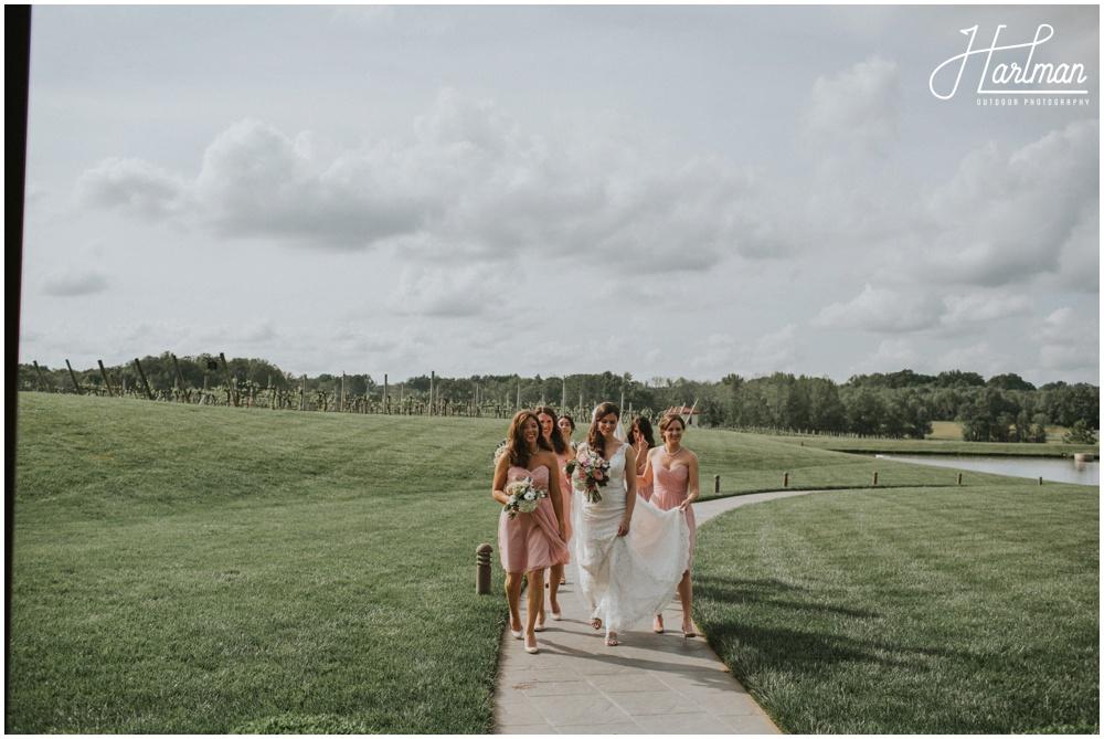 North Carolina Vineyard Wedding _0019