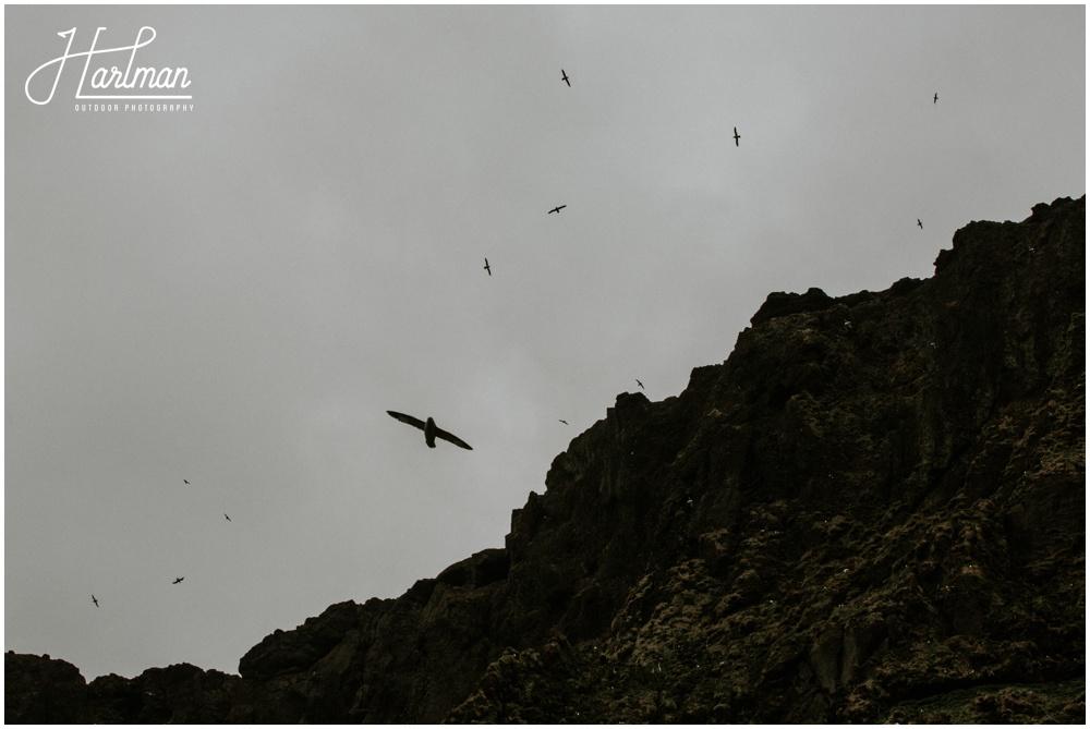Wedding Black Sand Beach Iceland _0012