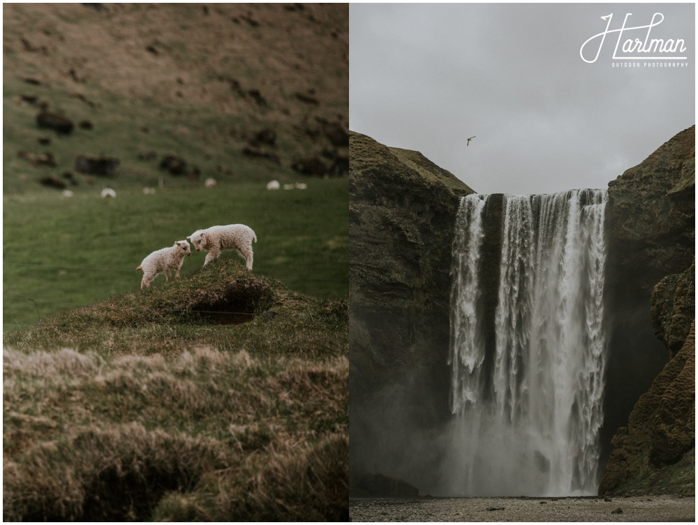 Skogafoss Waterfall Wedding Iceland _0002