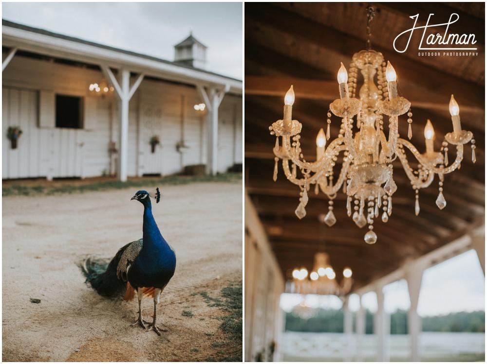 North Carolina Barn Wedding Venue _0002