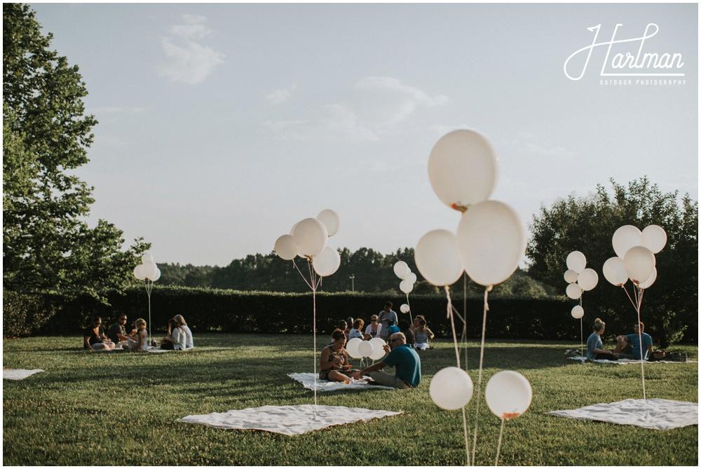 picnic wedding reception _0016