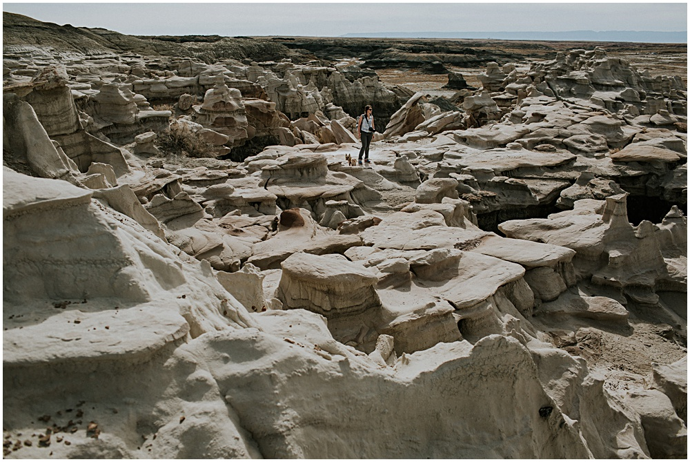 Bisti Badlands Middle of Nowhere