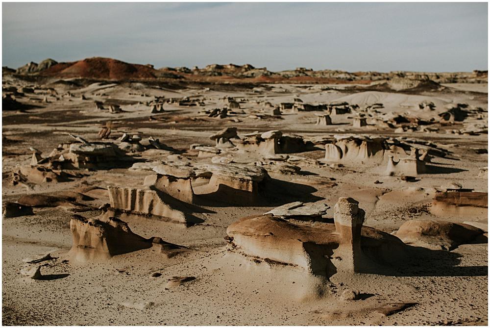 Bisti Badlands New Mexico Landscape
