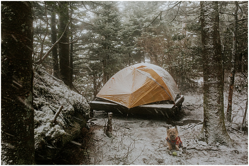 Grandfather Mountain Backcountry Backpacking