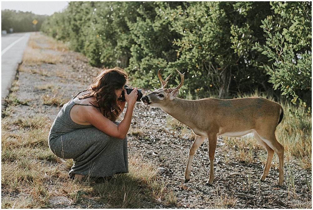 Key Deer Photography