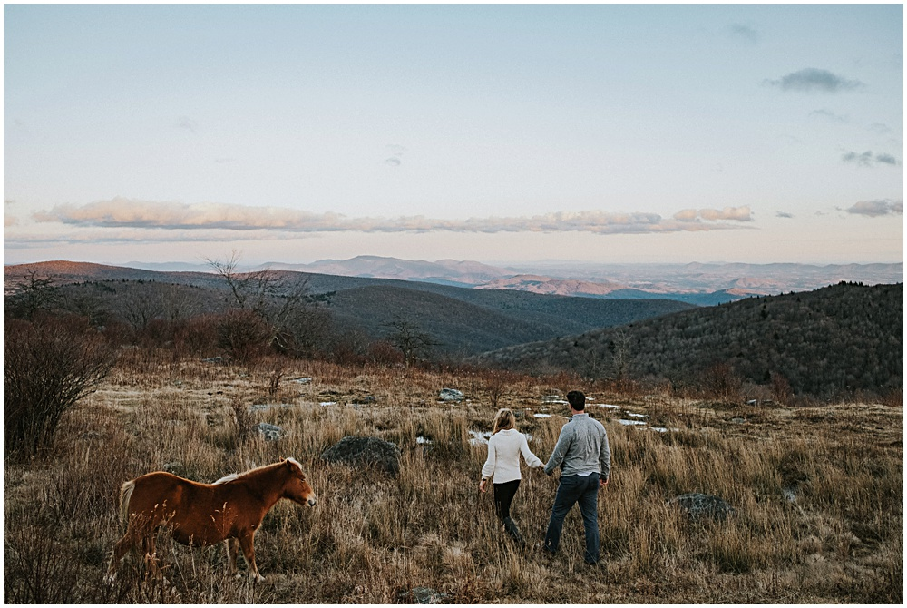 Mount Rogers Appalachian Trail Engagement Session