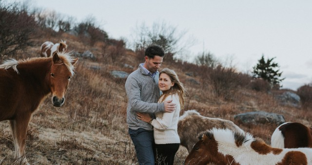 Kealy + Garrett | Virginia Mountain Adventure with Wild Ponies