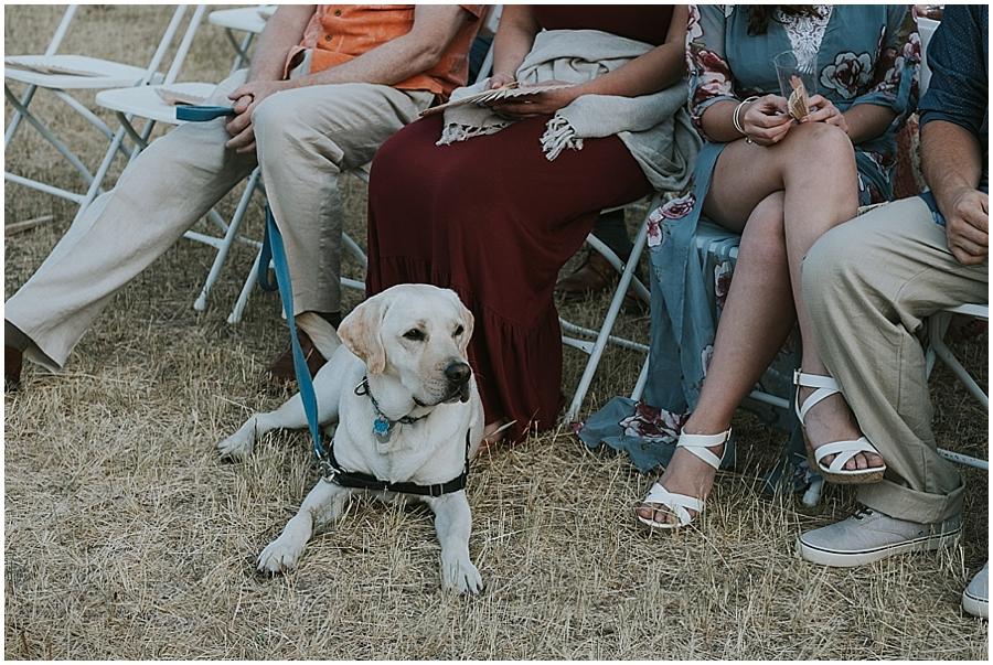 Dog outdoor wedding