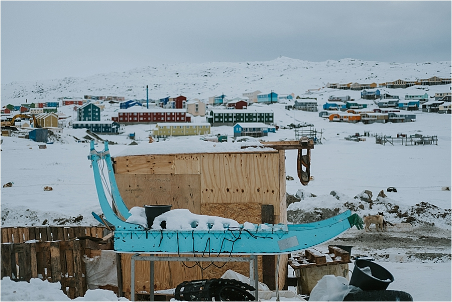 Greenland dog sled