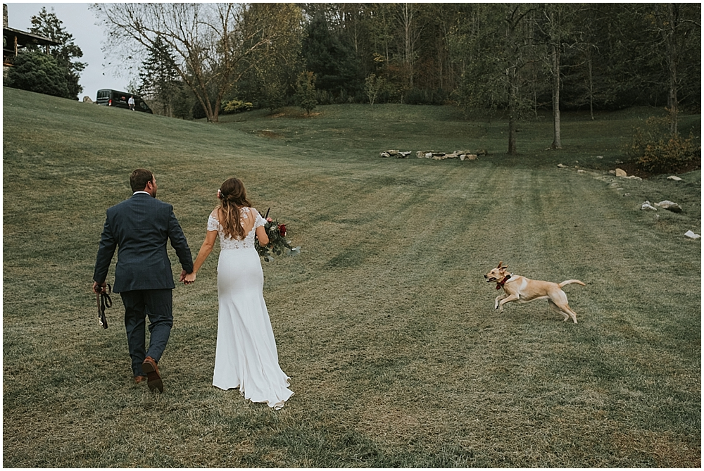 Wedding portraits with dog in Asheville, NC