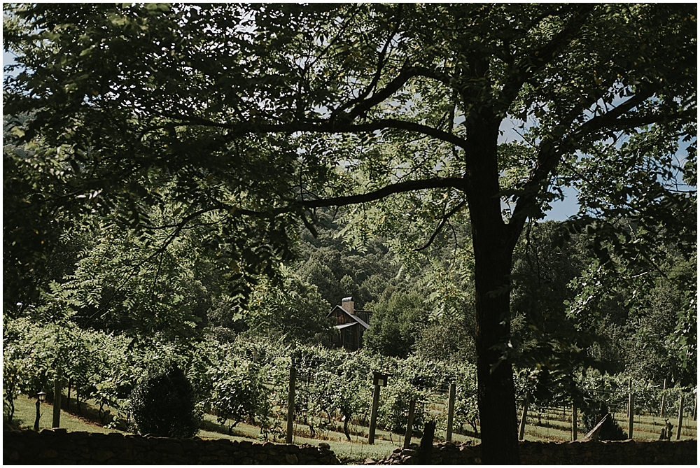 north carolina vineyard wedding venue