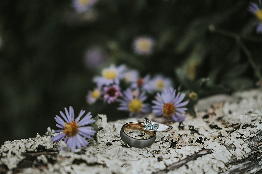 Roan Mountain State Park Elopement