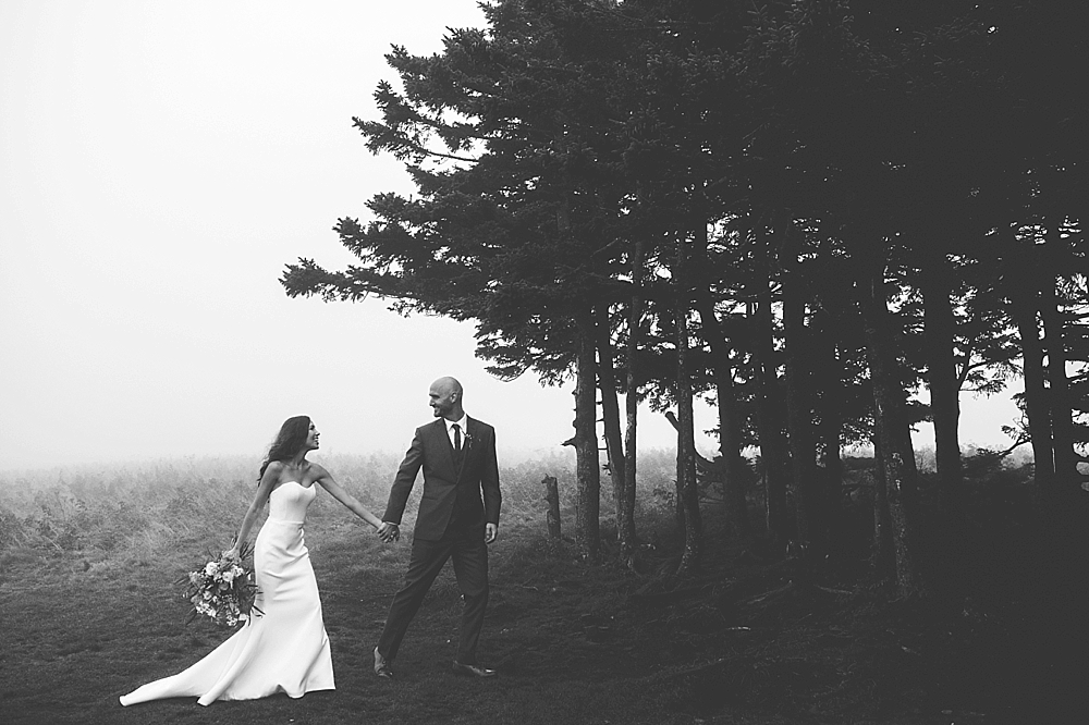 Roan Mountain elopement wedding
